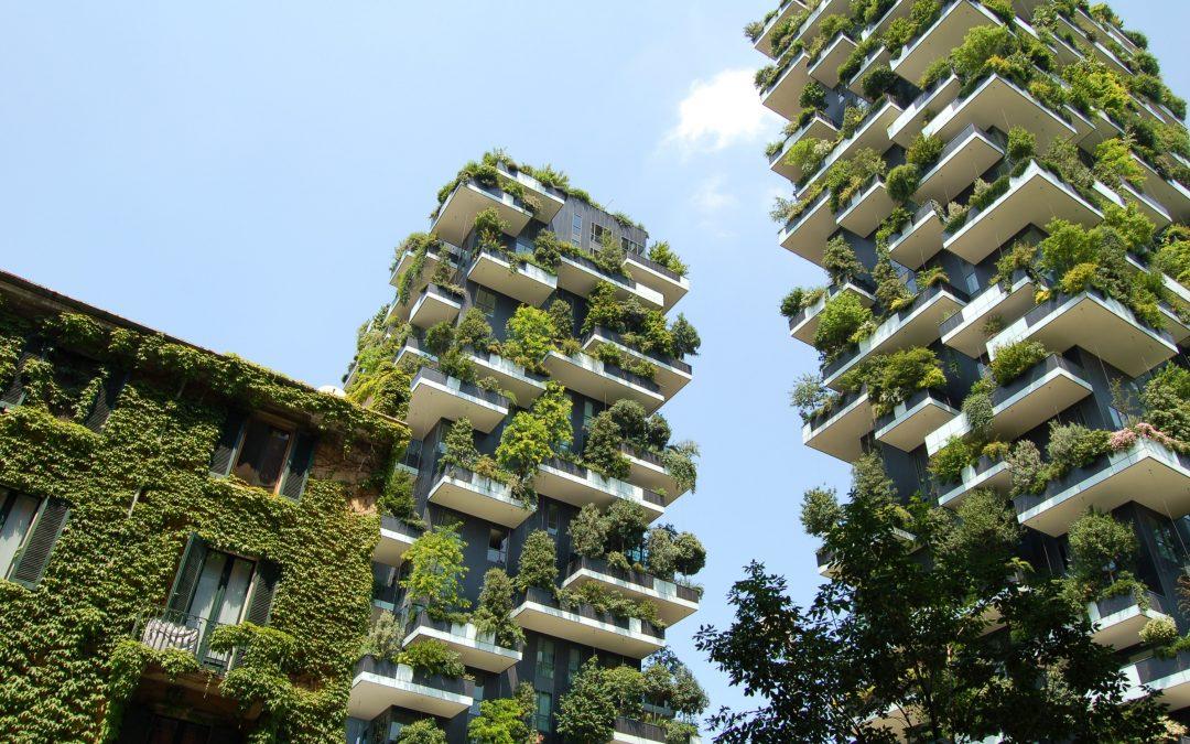 Eine zirkuläre Bauplanerin in der Kreislaufwirtschaft – Neue Jobs im Bereich Nachhaltigkeit