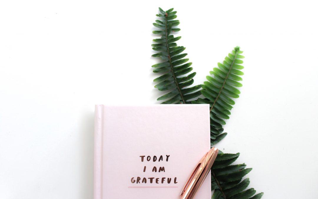 Wie Dankbarkeit dir Kraft für den nächsten Karriereschritt gibt